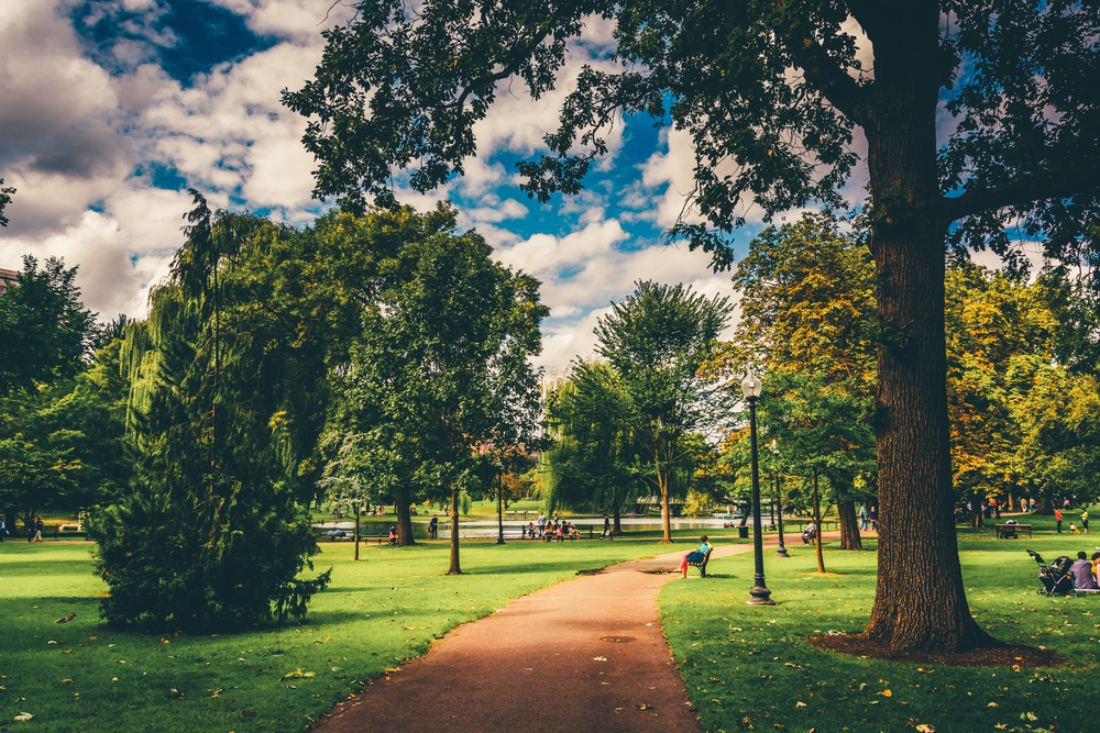Frayssinet obtient le niveau exemplaire afaq 26000 for Jardins jardin 2015
